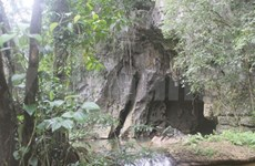 New massive cave discovered in Quang Binh