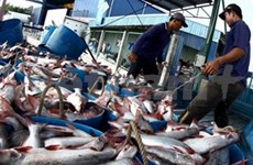 VN fisheries industry sees strong wave of exports