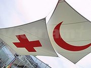 VN attends SEA Red Cross Leadership Meeting in Singapore