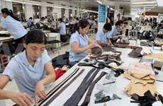 Garment enterprises strive to take advantages of GSP