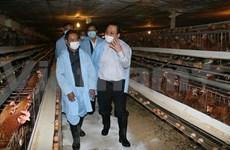 Deputy PM inspects bird flu prevention in border province