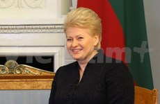 Ambassador pledges to work for stronger Vietnam-Lithuania ties