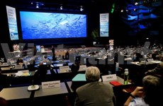 Oceans play important role in global food security: FAO