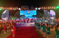 2014 Ha Long Carnival attracts crowds