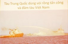 Vietnam resolves to safeguard rights, interests in East Sea: official