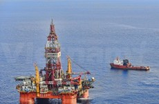 Vietnamese organisations oppose China's violations of sovereignty