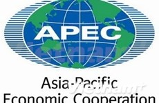 APEC highlights significance of skills in regional growth