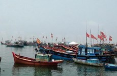 Offshore fishermen resolved to work as normal in East Sea