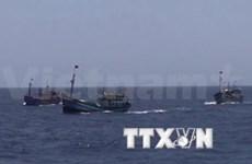 Chinese ship sinks Vietnamese fishing vessel
