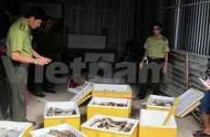 Vietnam vows to boost fight against wild species smuggling