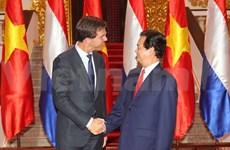 Vietnam, Netherlands set up strategic partnership on agriculture
