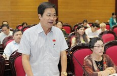 Amended Law on Vietnamese Nationality passed