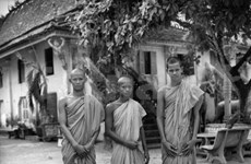 Paris exhibition features photos of changing Vietnam
