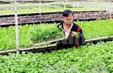 Vietnam seeks broader markets for farm produce