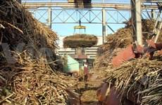 Workshop seeks ways to reduce sugar production cost
