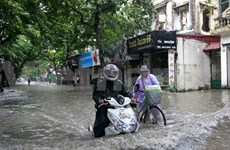 Localities requested to take precautions against Rammasun