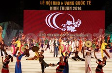 Int'l grapes and wine festival gets underway in Ninh Thuan