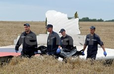 ASEAN strongly condemns downing of MH17