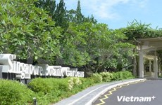 Vietnamese visitors to Singapore record double-digit growth in Q1