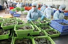 Ninh Thuan has new shrimp processing plant