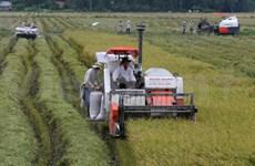Breakthrough needed for Mekong Delta's economic growth