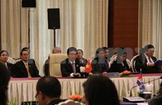 Vietnam vows to work with ASEAN for successful Community building