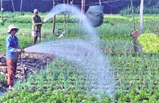 Better policy needed to draw investment in hi-tech agriculture