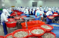 Agro-forestry-fishery exports hike up in eight months