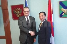Vietnam, Russia deputy foreign ministers meet for political consultation