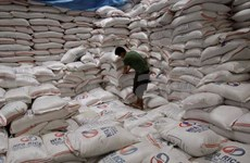 Philippines to import 500,000 tonnes of rice via G2G deals