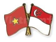 Vietnam-Singapore friendship association convenes first congress