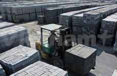 GEF project helps promote non-fired brick production