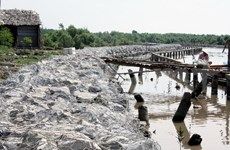 Khanh Hoi estuary in Ca Mau eroded seriously