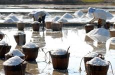WHO calls on Vietnamese to reduce salt intake