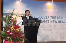 Direct air route hoped to fuel Vietnam-Singapore ties