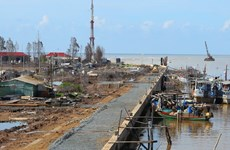 Bac Lieu tackles climate change