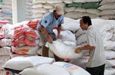 Vietnam's rice export forecast to meet difficulty in 2015