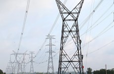Over 99 pct of communes join national power grid