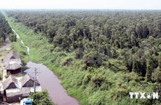 Wildlife thrives in Ca Mau forest
