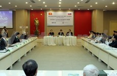 Slovakia keen on energy collaboration with Vietnam