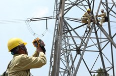 EVN fulfils yearly power generation plan