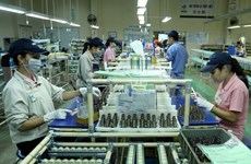 Japanese firms explore investment opportunities in Binh Duong
