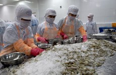 Shrimp exports to hit 3.8 billion USD this year