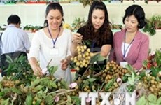 Vietnam fruit appeals overseas markets