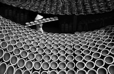 Vietnamese photographers win honours at global contest