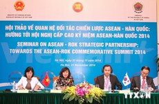 Workshop boosts ASEAN-RoK strategic partnership