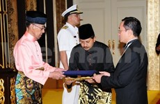 Malaysia keen on boosting partnership with Vietnam