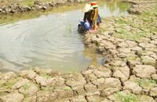 Mekong Delta faces water shortage, salination