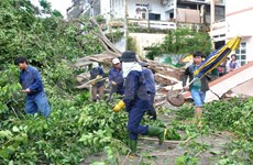 Binh Dinh asks for government support to overcome storm aftermath