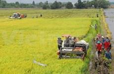 World Bank helps Mekong Delta tackle climate change